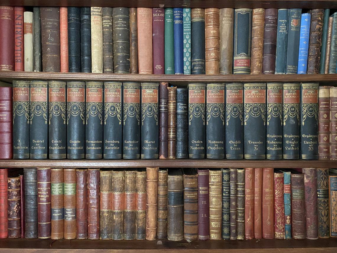 Царски Дворец Врана, Библиотека